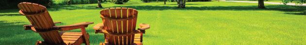 Gräsmatta för sol och uttorkning/ torka